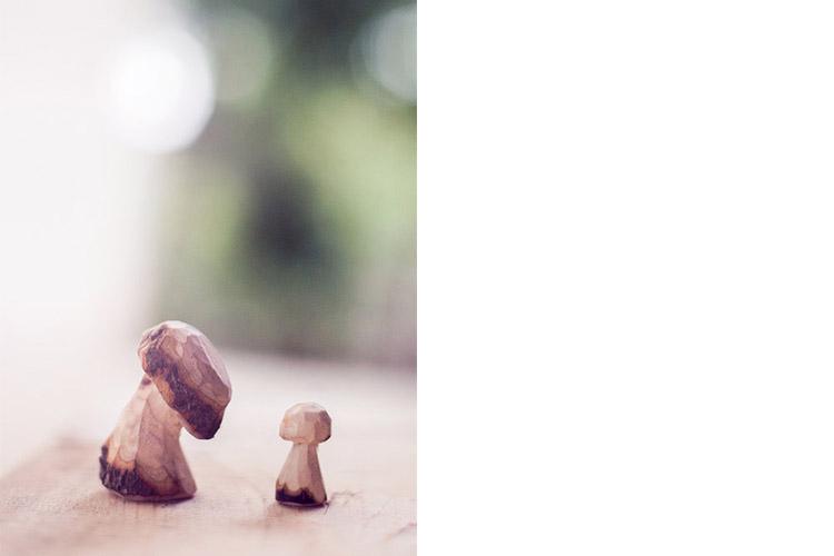 華德福,香菇精靈