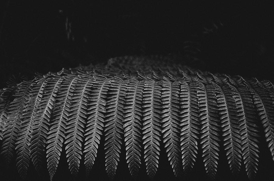 心象攝影,黑白,GR